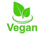 Vegan Dishes Restaurant Allegra, Zurich Airport, welcome hotels
